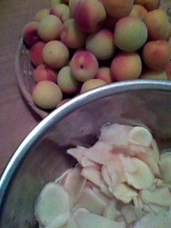 梅と新生姜